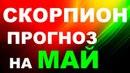 СКОРПИОН МАЙ 2018 ТАРО РАСКЛАД гадание онлайн