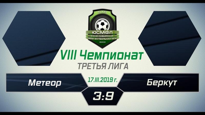 VIII Чемпионат ЮСМФЛ. Третья лига. Метеор - Беркут 39, 17.03.2019 г. Обзор