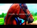 ♡Human life among horses♡ musical vlog2
