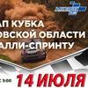 Кубок Орловской области по ралли-спринту.