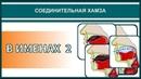 Айман Сувейд. 4. Соединительная хамза: В ИМЕНАХ 2 (с субтитрами на русском)