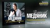 Владислав Медяник - Отогрей мне душу (Audio)