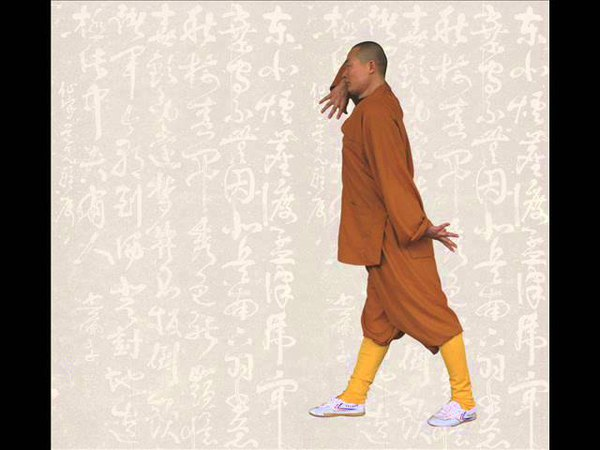 Shaolin Qi Xing Quan 少林七星拳