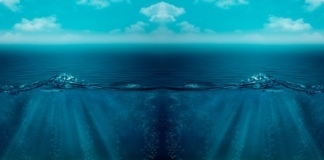 На дне Тихого океана обнаружили непонятные огромные следы