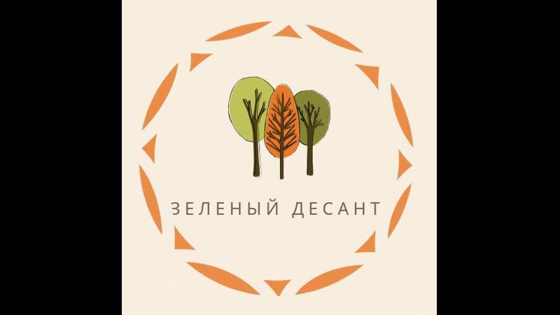 Зелёный десант (СОП Молния, ССО Палитра, СОП Эверест)