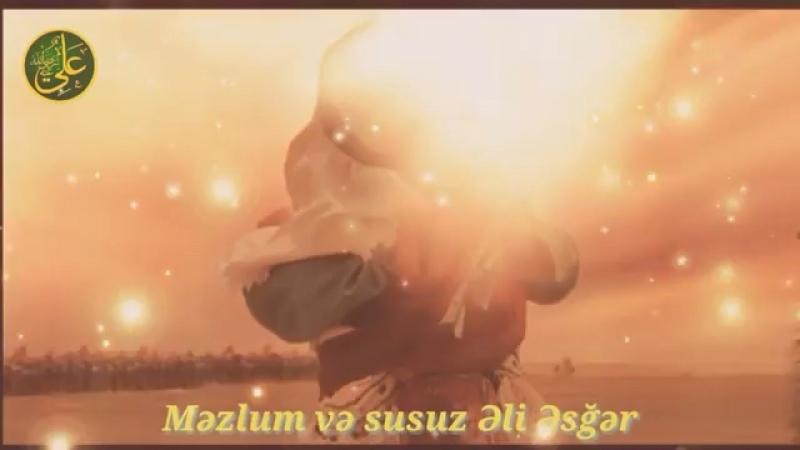 Shahin solan gül Əliəsğər
