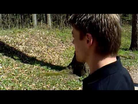Morčata na útěku - Predátor na Potštejně