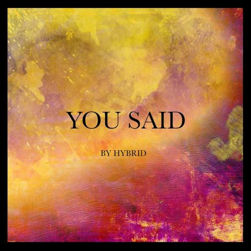 Hybrid альбом You Said