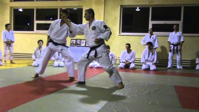 Мотоха Йошин рю Дзю Дзюцу. мен учі - коте гаєши. (Jiu Jitsu seminar)