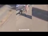 Голая женщина ходит по Улан-Удэ