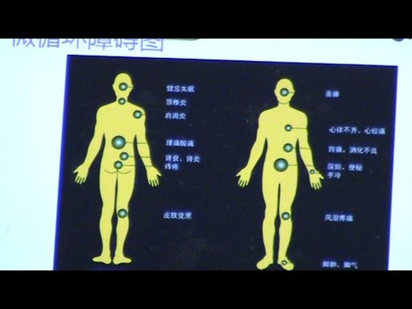 Традиционная китайская медицина (1 часть) Fohow Фохоу Феникс