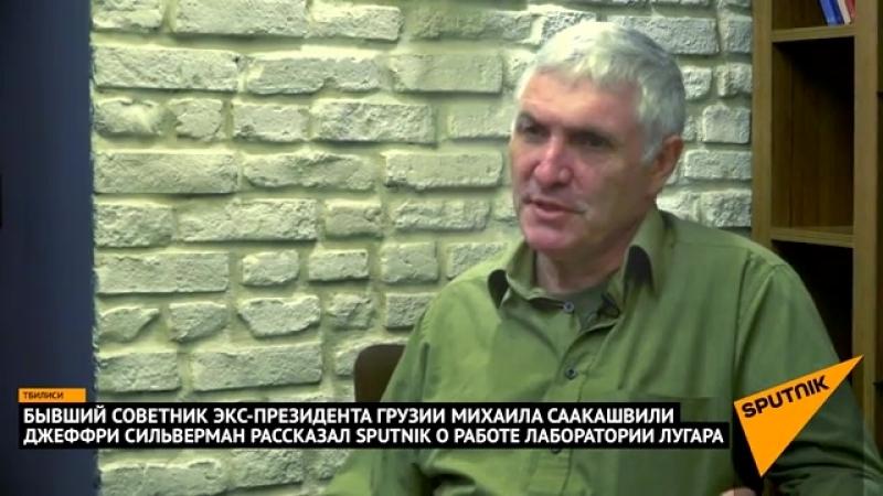 Бывший советник Саакашвили Грузию заставили построить лабораторию Лугара