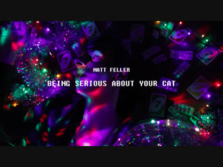 Matt feller - being serious about your cat (music video)