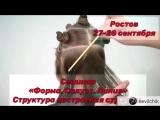 Женские стрижки - Севиль Березовская (ESTEL ROSTOV STUDIO)