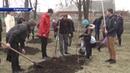 Фруктовые сады появятся в каждой школе Харцызска