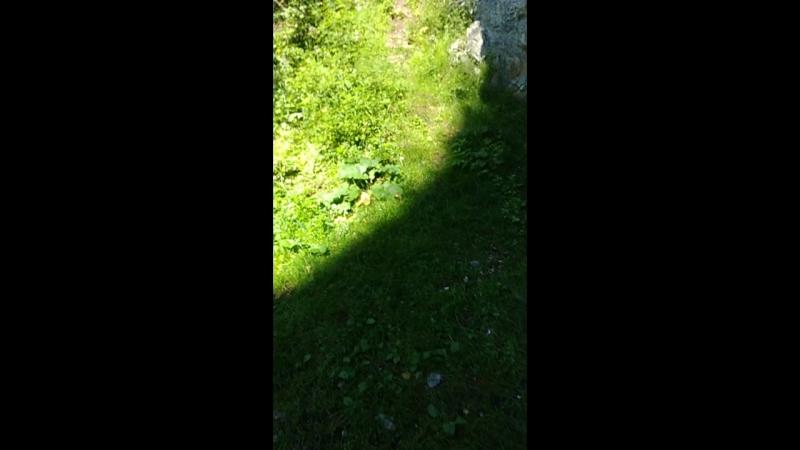 Пашинская пещера 2