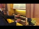 651 667 J S Bach Chorale Preludes Leipziger koralen BWV 651 667 Bálint Karosi organ