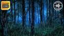 Ночной дождь с грозой и громом 5 часов Звуки природы шум дождя для сна и релакса