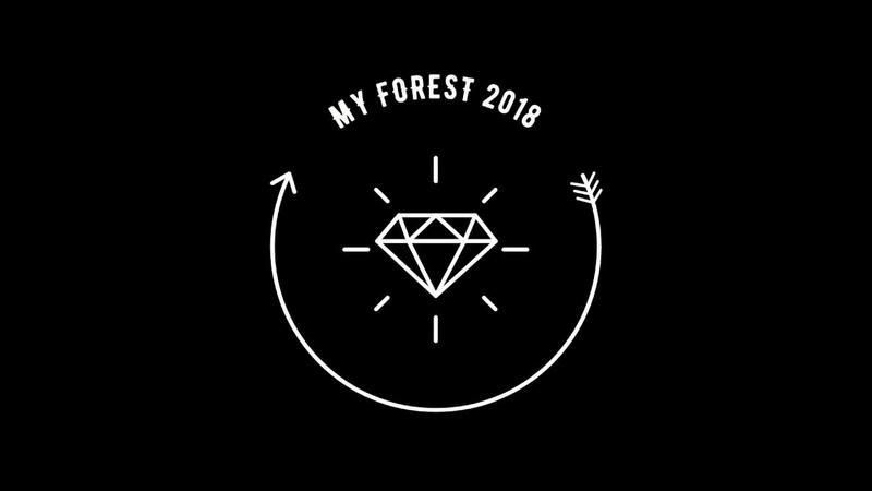 Dj KITE 👽 Happy B-day 👽 MY FOREST 2018 👽 live