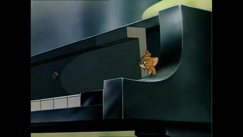 Том и Джерри 2 сезон 9 серия Концерт для кота с оркестром