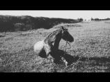 Copycat - magical clips