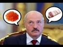 Хроники заБеларусь Лукашенко отведал икры и посоветовал сало