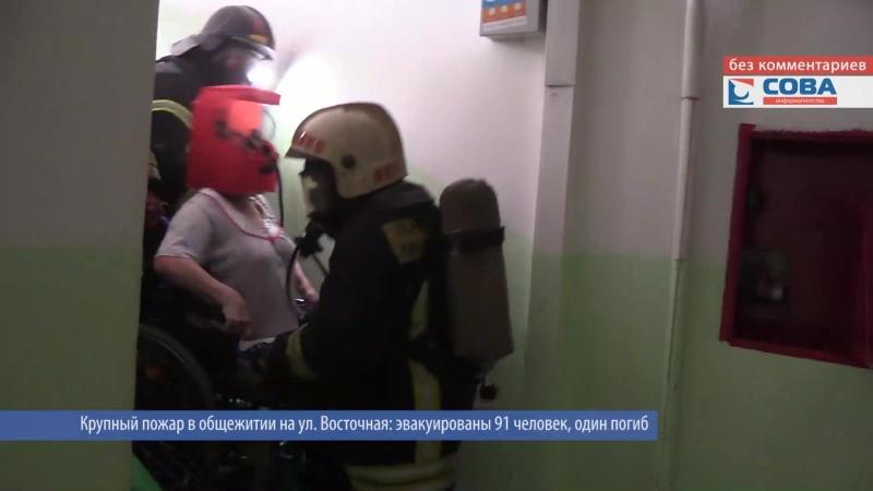 Пожарные спасают людей и котиков в общежитии на Восточной
