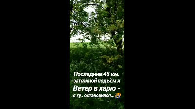 VID_263791014_011746_772.mp4