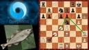 Шахматы AlphaZero Stockfish 8 ЖАРКАЯ СХВАТКА в английском еже