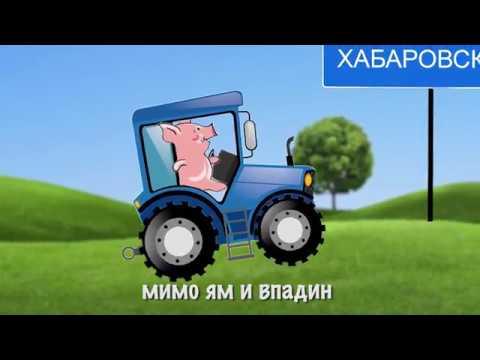 Поросенок в Хабаровске