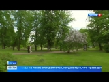 Косить или не косить какой высоты должна быть трава у дома - Россия 24
