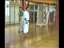 SHIRAI Sensei_ This is karate