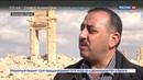 Новости на Россия 24 Директор музея Пальмиры если мировое сообщество поможет мы восстановимся за 5 лет
