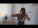 Adult beginner violinist 1 year La Cinquantaine