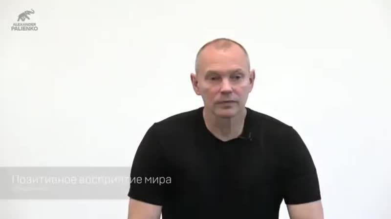 Позитивное восприятие мира. Александр Палиенко