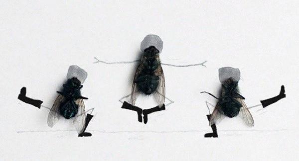опять умчались птицы в край неведомый и снова наступают холода. и только мухи человеку преданы - не улетают, суки, никуда... ©