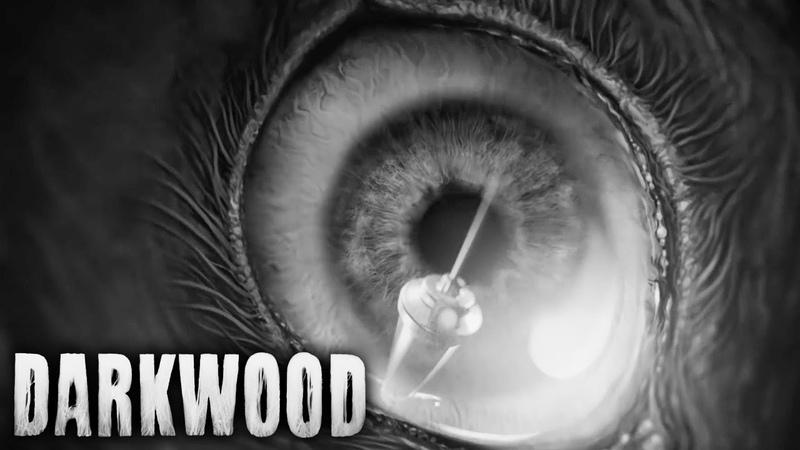 Darkwood - Official Launch Trailer | Survival Horror