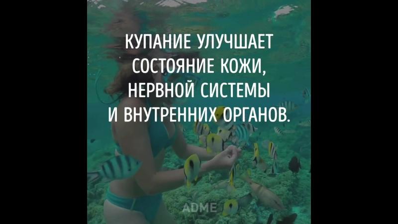 Плавать в море нужно чаще. 00.50 мин