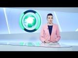 Боевики возобновили ракетный обстрел сирийского Алеппо | Вечер | СОБЫТИЯ ДНЯ | ФАН-ТВ