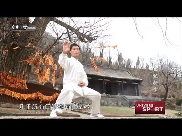 Kung-fu : maître de taiji quan