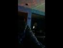 Steven Krupnik — Live