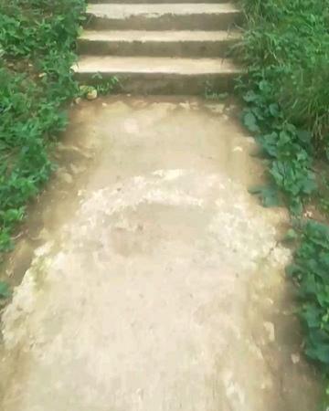 Lao.ley video