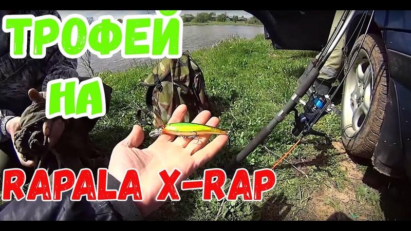 Трофей на Rapala X Rap с Алиэкспресс Разловил DUO Realis от Bearking и Jackall Magallon