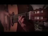 Заказать испанскую гитару фламенко на свадьбу, праздник и корпоратив Москва