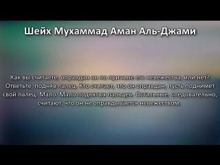 Шейх Мухаммад Аль-Джами- Ширк и оправдание по незнанию (невежеству)