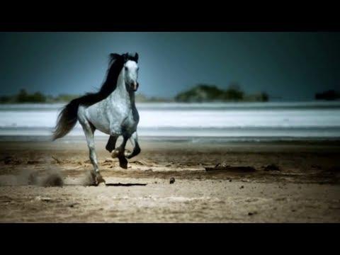Hans Zimmer Lisa Gerrard - Now We Are Free