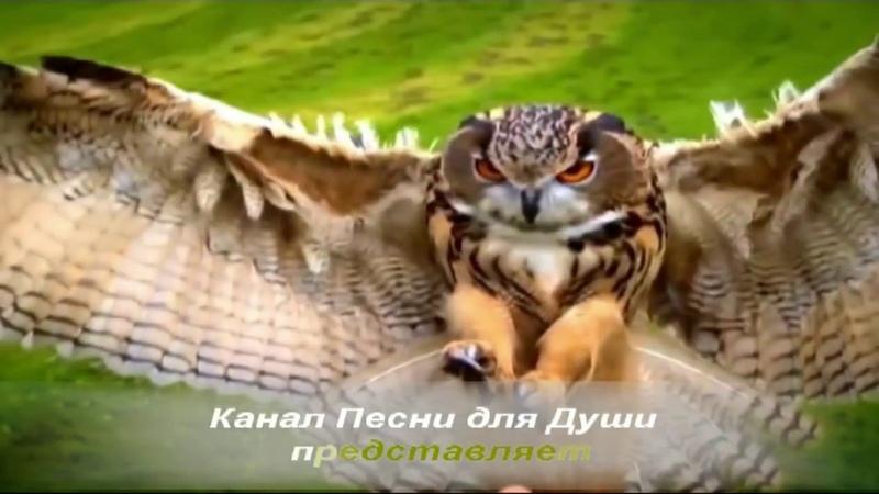 Алмас Багратиони -Простые Истины