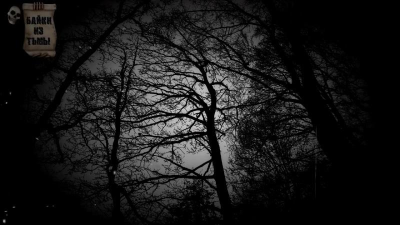 [Байки из Тьмы] Истории на ночь: Случай в Коми
