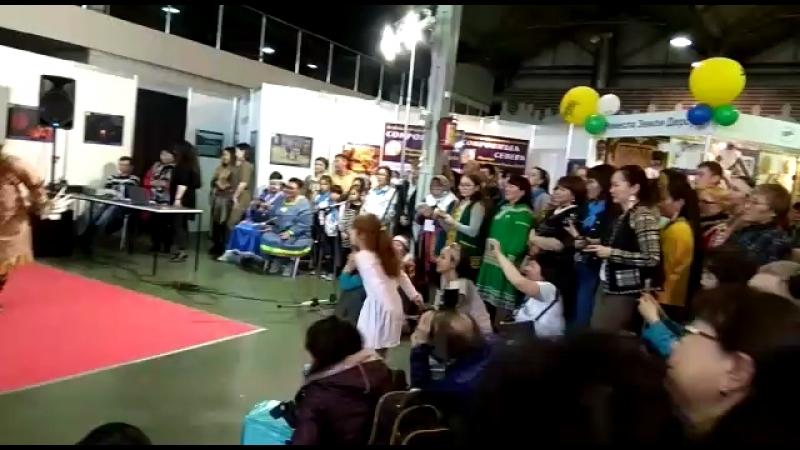 Чайки Берингов Пролива