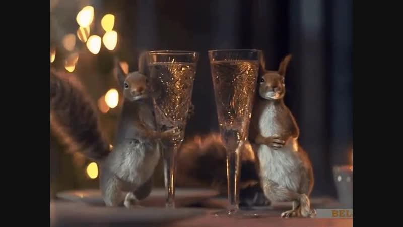 Могли бы уже и шампанское в кулер на работе налить Как будто в эти дни кто то работать собирается